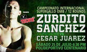 Juan Carlos Sanchez Jr vs Cesar Juarez - full fight Video 2015