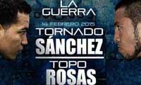 David Sanchez vs Juan Alberto Rosas full fight Video 2015 Wba