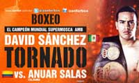 David Sanchez vs Anuar Salas full fight Video pelea 2014