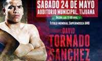 David Sanchez vs Breilor Teran - full fight Video pelea 2014