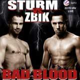 Felix Sturm vs Sebastian Zbik - full fight Video AllTheBest Videos