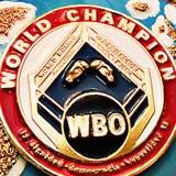 Wilfredo Mendez vs Gabriel Mendoza full fight Video 2020 WBO