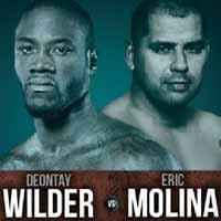 Deontay Wilder vs Eric Molina - full fight Video 2015 WBC