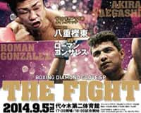 Roman Gonzalez vs Akira Yaegashi - full fight Video 2014 Wbc
