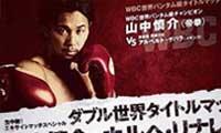 Shinsuke Yamanaka vs Alberto Guevara - full fight Video 2013 WBC