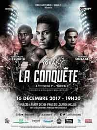 Tony Yoka vs Baghouz full fight Video 2017