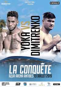 Tony Yoka vs Alexander Dimitrenko full fight Video 2019