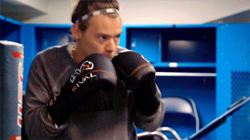 Harry Weekly boxer
